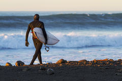 Winter Surfer Stock Images