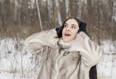 Winter surprise Stock Photography