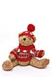 Winter Sweater Bear Stock Image