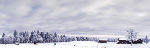 Winter in Sweden Stock Images