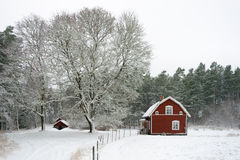 Winter in Sweden Stock Image