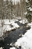 Winter Swedish brook Royalty Free Stock Images