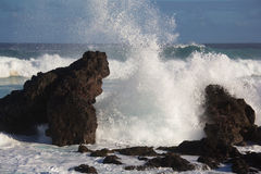 Winter swells. Large wave from winter swells breaking on the shore at Hookipa, Maui. Hookipa is a beach on the north shore of Maui, Hawaii, USA Royalty Free Stock Images