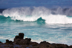 Winter swells. Large wave from winter swells at Hookipa, Maui. Hookipa is a beach on the north shore of Maui, Hawaii, USA Royalty Free Stock Images