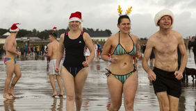 Winter swim Stock Image