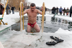 Winter swimmer Royalty Free Stock Image