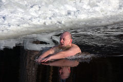 Winter-swimmer Stock Photography
