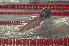 Winter swimming competitions Stock Images