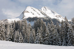 Winter-Szene, Österreich Stockbild
