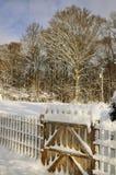 Winter-Szene Lizenzfreie Stockfotos