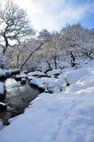 Winter-Szene Stockfoto
