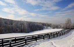 Winter-Szene 7120 Lizenzfreies Stockbild