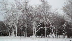 Winter-Szene in Niagara Falls lizenzfreies stockbild