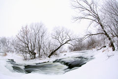 Winter szenisch vom Fluss Krynka, Donetsk-Region, Ukraine Stockfotografie