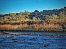 Winter szenischer Arkansas River in Süd-Colorado Lizenzfreies Stockfoto
