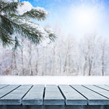 Winter table royalty free stock images