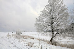 Winter in Table Mountain in Pasterka – Poland Royalty Free Stock Photos