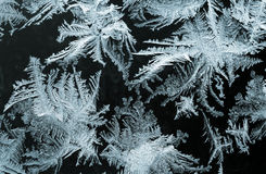 Winter tale Stock Photography