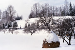 Winter tale. Specific winter image of countryside from Romania Stock Photography
