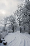 Winter tale Royalty Free Stock Photography