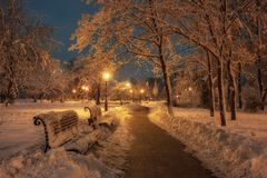 Winter tale in city park with snow covered trees, wooden benches and row of lamps along alley at the night.  royalty free stock photo