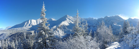 Winter in Tatra Mountains Stock Image