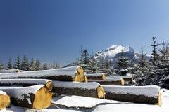 Winter in tatras Bergen in Polen mit Haufen von Stück Hölzern Stockfotografie