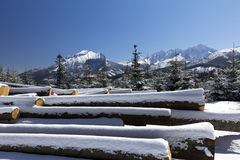 Winter in tatras mountains in poland  with heap of pieces of wood Royalty Free Stock Photos