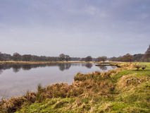 Winter at Tatton Park Stock Image
