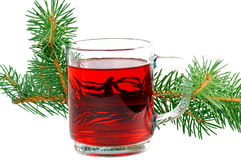 Winter tea. Tea glass and fir branch Royalty Free Stock Image