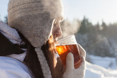 Winter tea Royalty Free Stock Photography