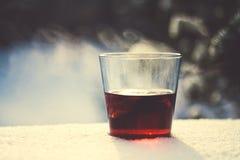 Winter tea Royalty Free Stock Photos