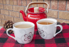 Winter Tea for Two Royalty Free Stock Photo