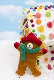 Winter Teddy Bear Royalty Free Stock Photos