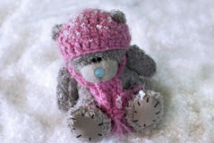Winter teddy bear in snow Stock Photos
