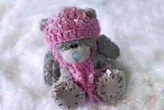 Winter teddy bear in snow Stock Photos