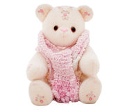 Winter teddy bear wearing a scarf. Flower teddy bear in a pink scarf representing winter, isolated on white.  Part of series featuring the same bear Stock Photography