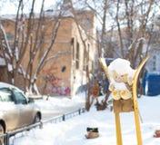 Winter teddy bear in the yard stock image