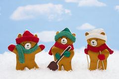 Winter Teddy Bears Stock Image