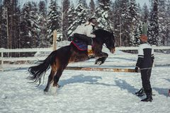 Winter jump horse ride jumping Stock Photos