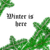 Winter text frame with pine tree branch Royalty Free Stock Photo