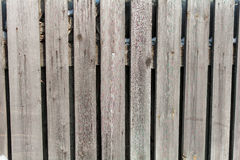 The winter texture of the wooden fence. The background is a wooden fence in the winter on a Sunny day stock photo
