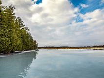 Winter Thaw Cedar Forest Beside Frozen Marsh. Water covering the ice from an early winter thaw Royalty Free Stock Image