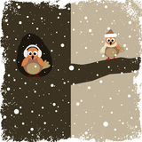 Winter theme. With two cute birds Stock Photography