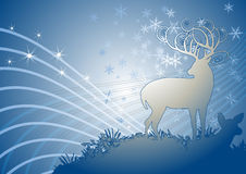 Winter theme background. Beautiful deer in the winter night Royalty Free Stock Photos