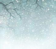 Winter theme background 5 Stock Image