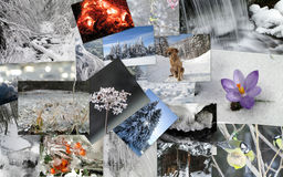 Winter theme collage Stock Photography