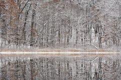 Winter, tiefe See-Reflexionen Stockbilder