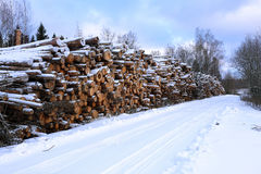Winter timber harvesting Stock Photos