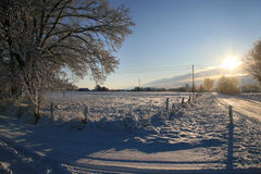 Winter time. The Winter starts now or soon. Hopefully again with blue sky and sunny days like shown in this photo Royalty Free Stock Image